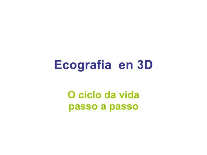 Ecografia  en 3D O ciclo da vida passo a passo