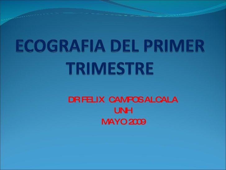 Ecografia Del Primer Trimestre,Ii Y Pbf