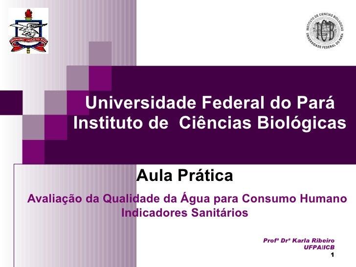 Aula Prática Avaliação da Qualidade da Água para Consumo Humano Indicadores Sanitários Universidade Federal do Pará Instit...