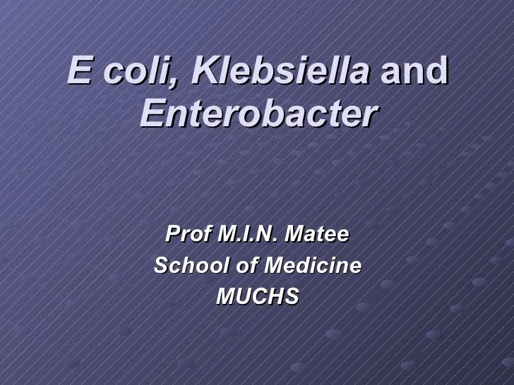 E coli, Klebsiella  and  Enterobacter Prof M.I.N. Matee School of Medicine MUCHS