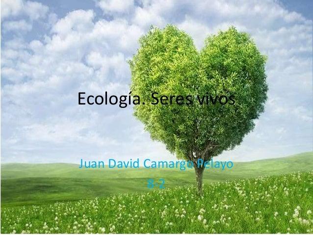 Ecología. Seres vivos Juan David Camargo Pelayo 8-2