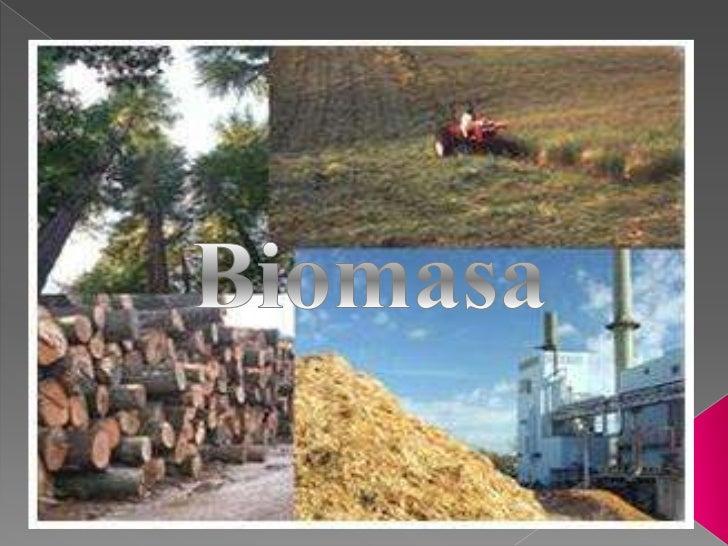 Toda la materia orgánica que proviene de: -árboles, plantas y desechos de desechosanimales-la agricultura (residuos de maí...