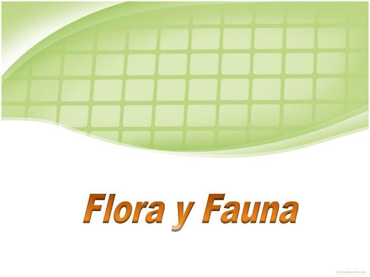 EcologíA Y El Medio Ambiente. Flora Y Fauna
