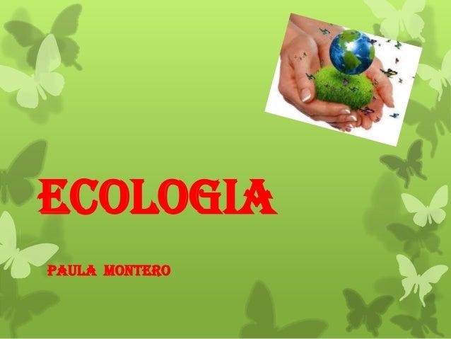 ECOLOGIA PAULA MONTERO
