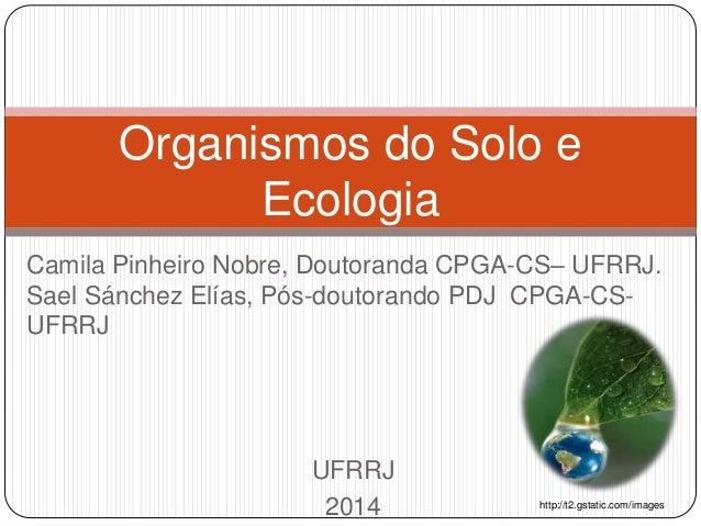 Camila Pinheiro Nobre, Doutoranda CPGA-CS– UFRRJ. Sael Sánchez Elías, Pós-doutorando PDJ CPGA-CS- UFRRJ UFRRJ 2014 Organis...
