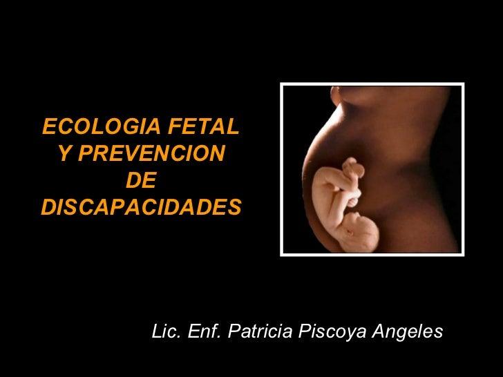 ECOLOGIA FETAL Y PREVENCION DE DISCAPACIDADES Lic. Enf. Patricia Piscoya Angeles