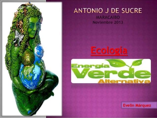 Ecología  Evelin Márquez