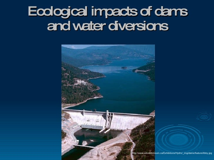Ecological impacts of dams and water diversions