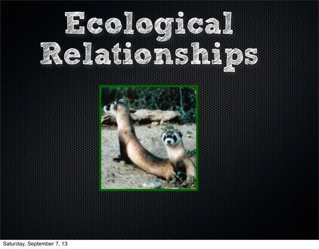 Ecological Relationships Saturday, September 7, 13