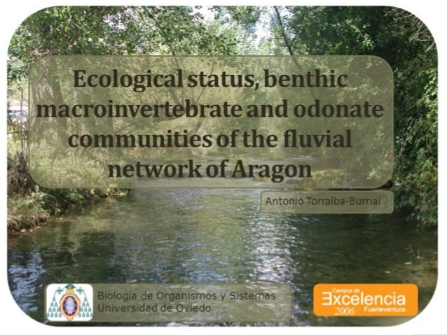 Ecological status and benthic macroinvertebrate communities of the fluvial network of Aragon