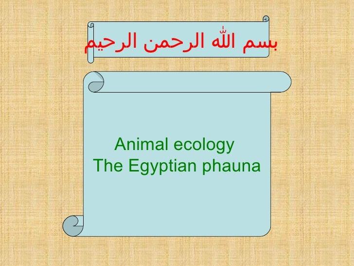 بسم الله الرحمن الرحيم  Animal ecology  The Egyptian phauna
