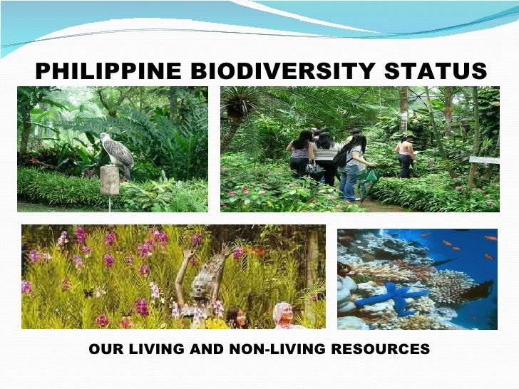 threats to philippine biodiversity Global biodiversity is being lost much faster than natural extinction due to  changes in land use, unsustainable use of natural resources, invasive alien  species,.
