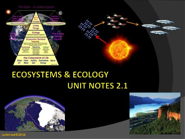 Ecology and ecosystems notes