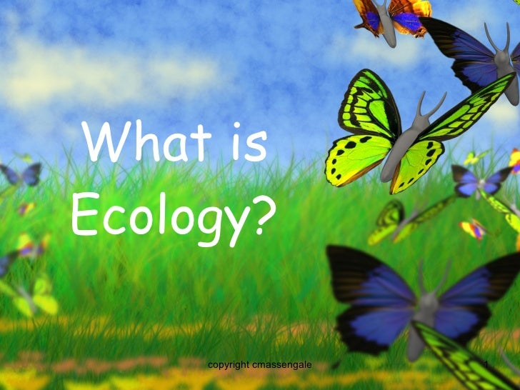 What is Ecology? copyright cmassengale