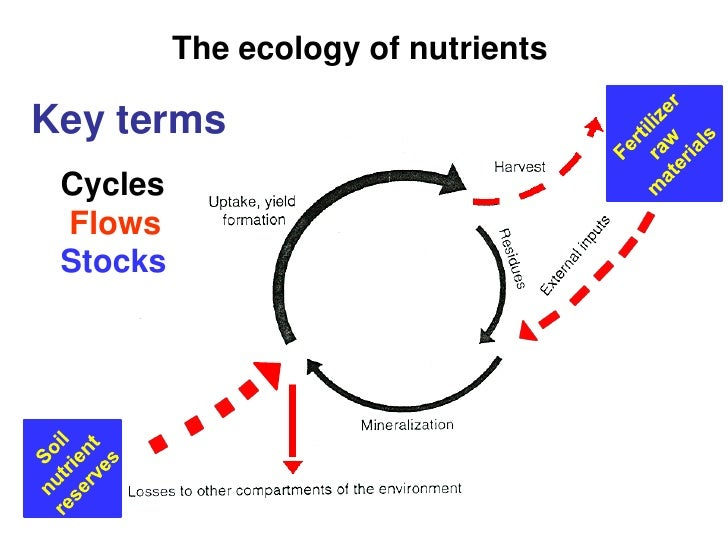 The ecology of nutrientsKey terms Cycles Flows Stocks