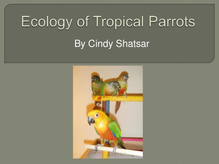 Ecology of tropical parrots