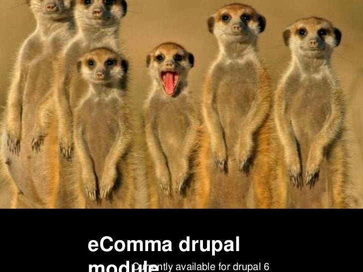 eComma drupal   Currently available for drupal 6