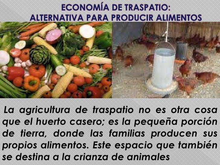 ECONOMÍA DE TRASPATIO:                  ALTERNATIVA PARA PRODUCIR ALIMENTOS<br />La agricultura de traspatio no es otra co...