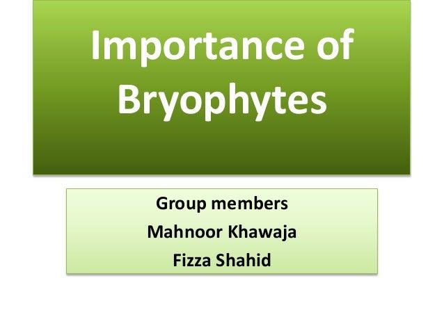 Importance of Bryophytes   Group members  Mahnoor Khawaja     Fizza Shahid