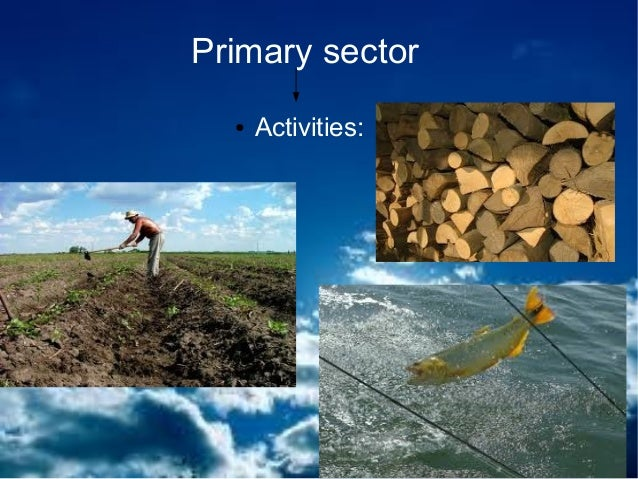 the primary sector The primary sector of industry generally involves the conversion of natural  resources into primary products most products from this sector are considered.