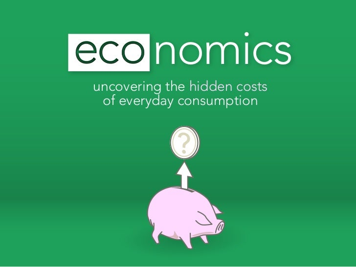 Eco-nomics, The hidden costs of consumption
