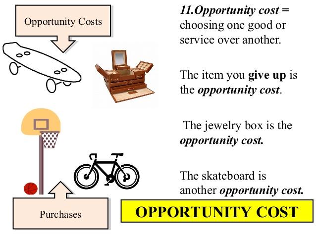 Economics Essays: Example of Opportunity Cost