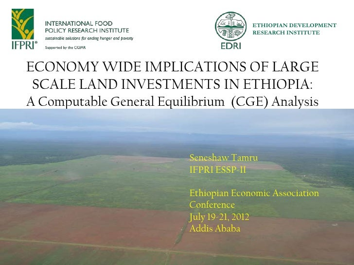 ETHIOPIAN DEVELOPMENT                                        RESEARCH INSTITUTEECONOMY WIDE IMPLICATIONS OF LARGE SCALE LA...