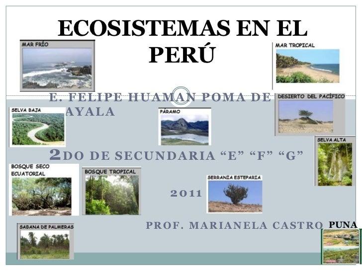 "ECOSISTEMAS EN EL PERÚ<br />e. felipehuaman poma de ayala<br />2DO DE SECUNDARIA ""e"" ""F"" ""G""<br />2011<br />Prof. marianel..."