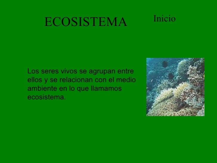 ECOSISTEMA Inicio Los seres vivos se agrupan entre ellos y se relacionan con el medio ambiente en lo que llamamos ecosiste...