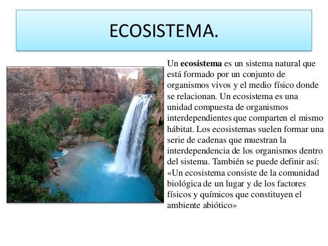ECOSISTEMA.Un ecosistema es un sistema natural queestá formado por un conjunto deorganismos vivos y el medio físico dondes...