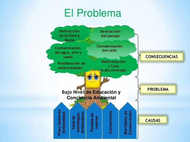 Ecosistema.html