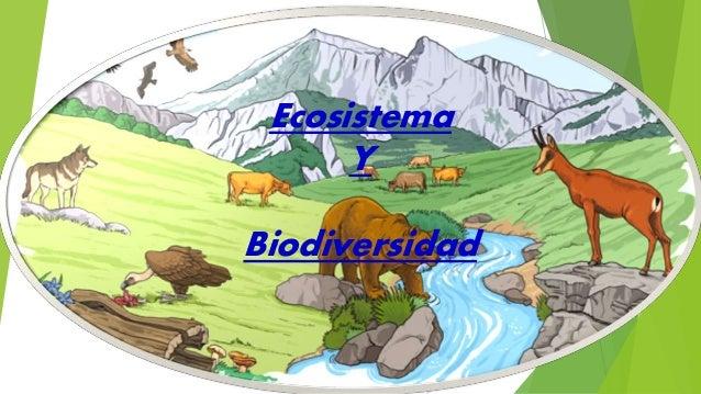 Ecosistema Y Biodiversidad