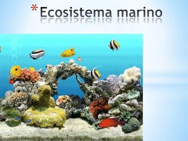Скачать Софт - Программы. Dream Aquarium 1.0700 - снова рыбки на заставке.