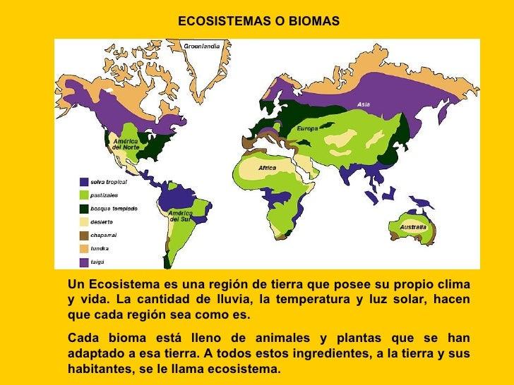 ECOSISTEMAS O BIOMAS     Un Ecosistema es una región de tierra que posee su propio clima y vida. La cantidad de lluvia, la...