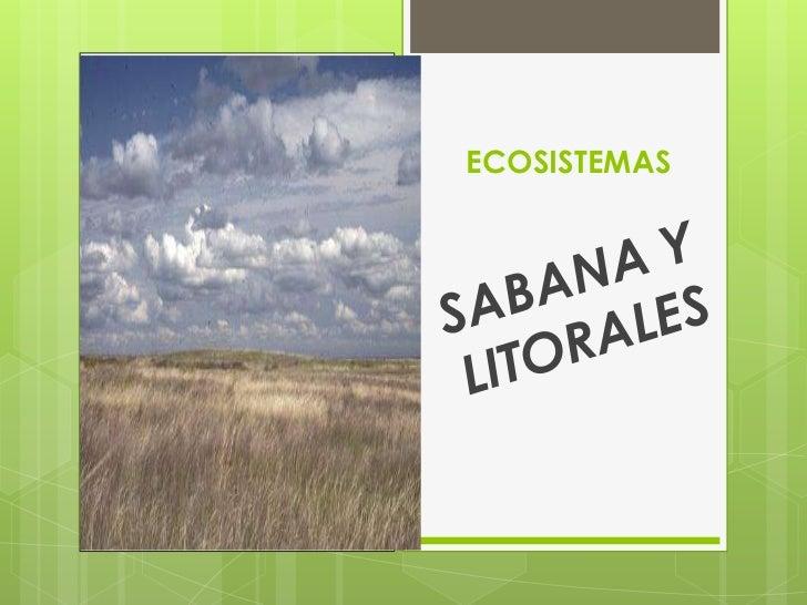 ECOSISTEMAS<br />SABANA Y LITORALES<br />