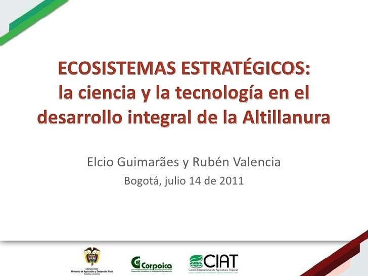 Ecosistemas estrategicos altillanura-colombia