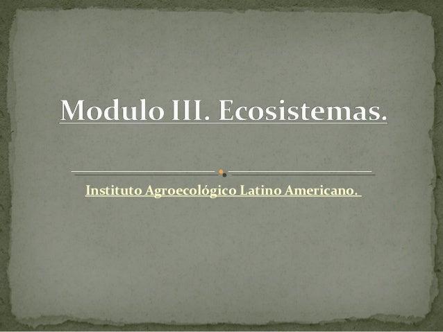 Instituto Agroecológico Latino Americano.