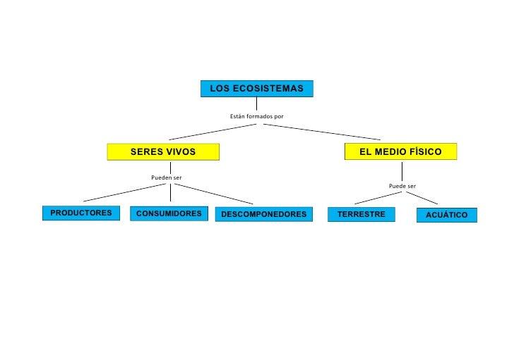 Ecosistemas = mapa conceptual