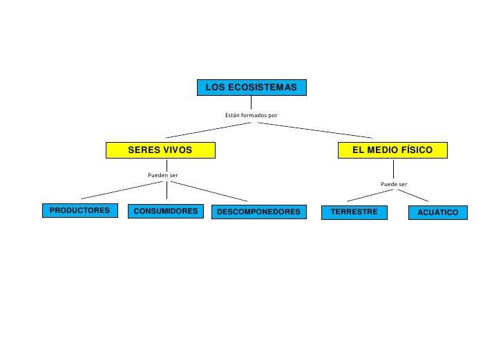 Ecosistemas = mapa conceptual pdf