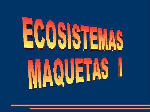 Ecosistemas Maquetas I