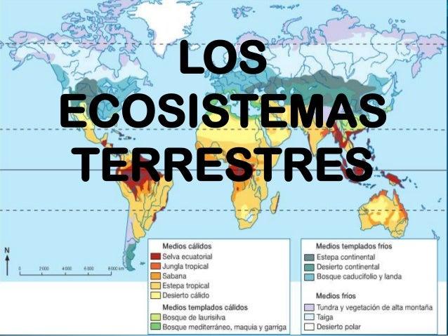 LOS ECOSISTEMAS TERRESTRES