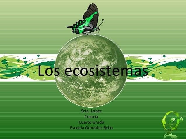 Srta. López Ciencia Cuarto Grado Escuela González Bello Los ecosistemas
