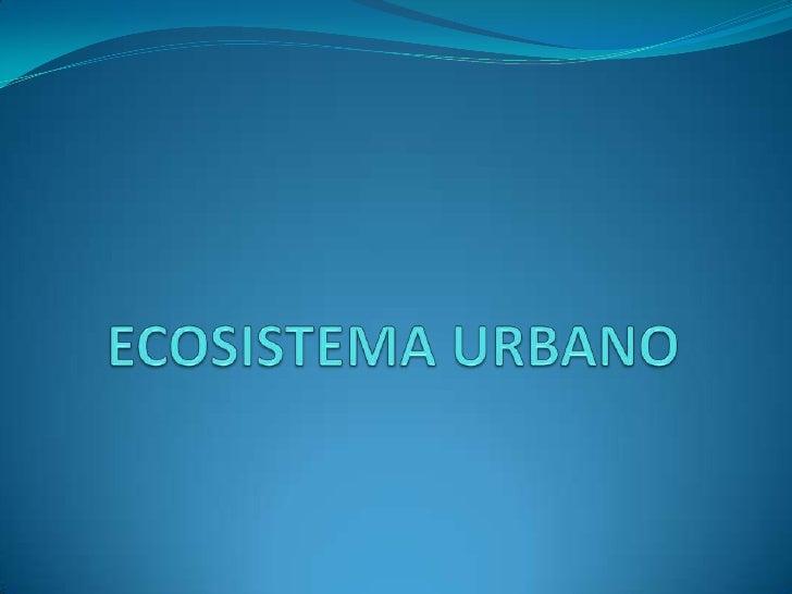 ECOSISTEMA URBANO<br />