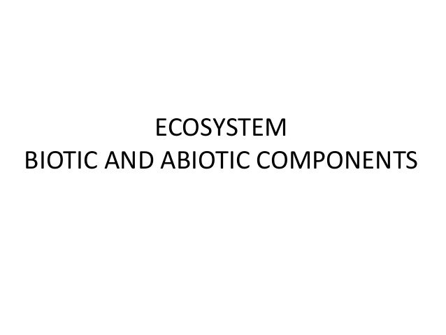 Ecosystem-components and interactions