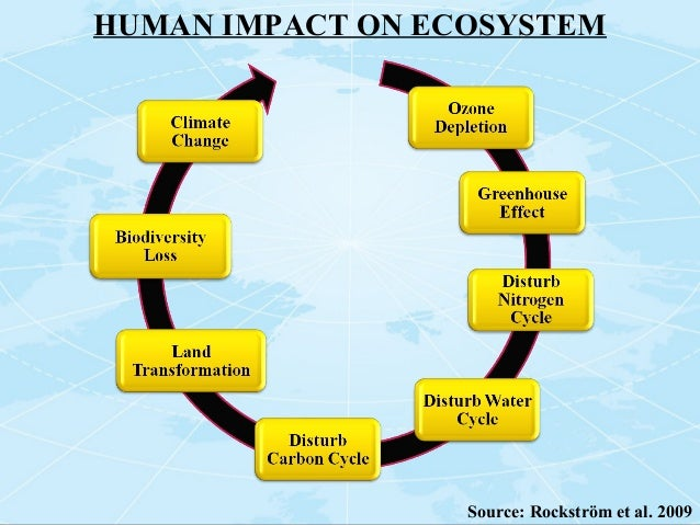 human impact on the ecosystem A: human activity affects ecosystems in a wide variety of ways, but it primarily does so through agriculture, habitat destruction, water use and fishing whenever humans enter a habitat, they tend to reshape it to fit their own needs, destroying the resources that other animals use, which drives them out.