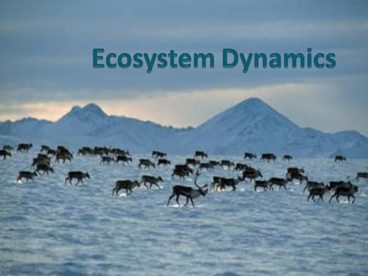 Effects of Environmental Change on Ecosystems Change can result from:   Population Changes   Physical Factors   Habita...