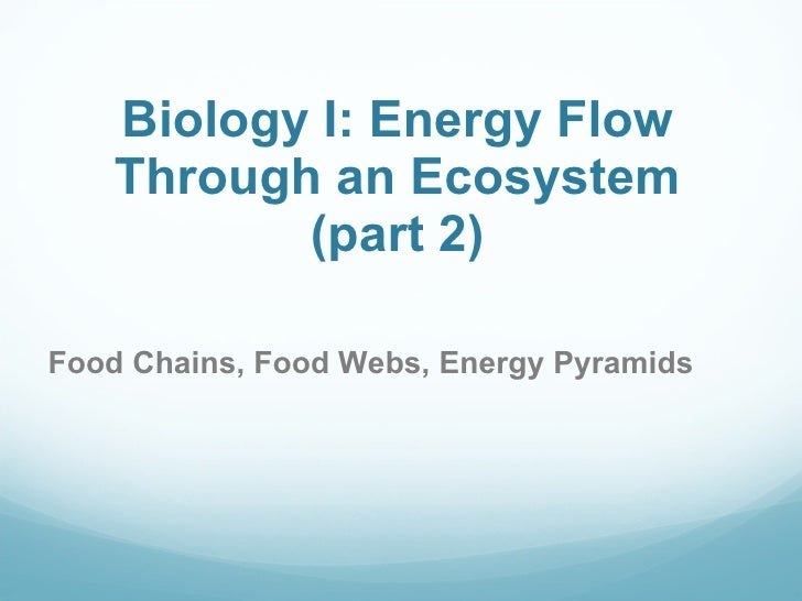 Biology I: Energy Flow Through an Ecosystem (part 2) Food Chains, Food Webs, Energy Pyramids