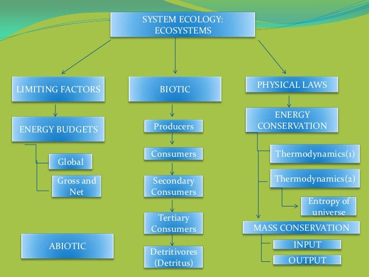 ECOSYSTEMS concept map BY GRP 6