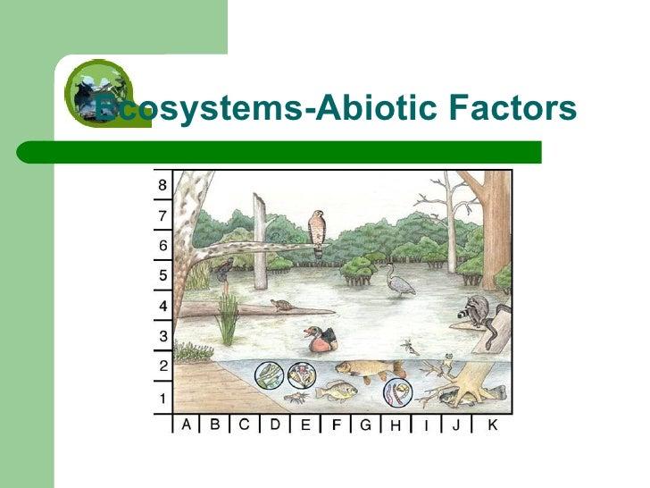 Ecosystems-Abiotic Factors