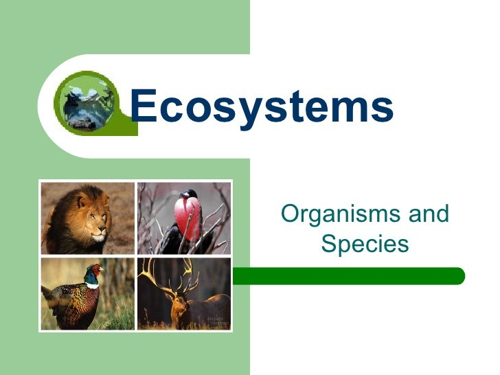 Organisms and Species Ecosystems